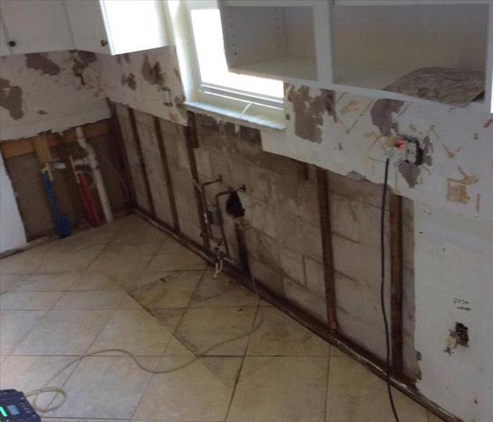Kitchen post demolition after mold growth affected the cabinets and walls