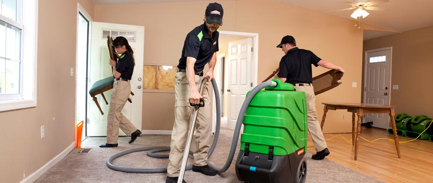 Mount Dora, FL cleaning services